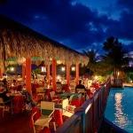 Restaurants & Bars (All Guests)