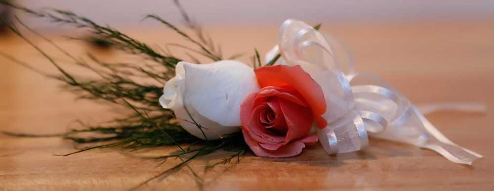Puerto Plata-Weddings-Gallery-3_04-1000x388